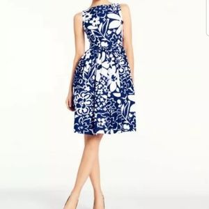 Kate Spade Tanner Blue&White Dress Great Condition